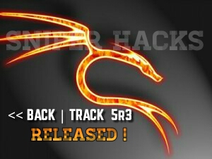 Download Backtrack 5r3 absolutely free (32 & 64 bit